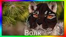переводчик эмодзи коты воители