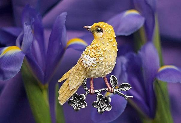 Какие подсказки нам чаще всего приносят птицы