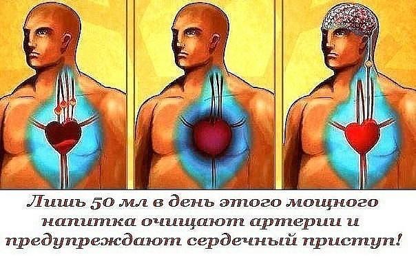 Лишь 50 мл в день этого мощного напитка очищают артерии и предупреждают сердечный приступ!