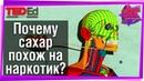 🍰 Почему сахар похож на наркотик? TED-Ed на русском