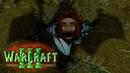 Воздушные баталии / Омертвляющий ветер / Warcraft 3 Легенды Аркаина: Книга орков I