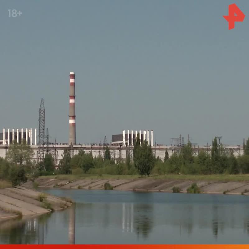Тимофей Баженов прикармливает радиоактивных сомов / #РЕНТВ