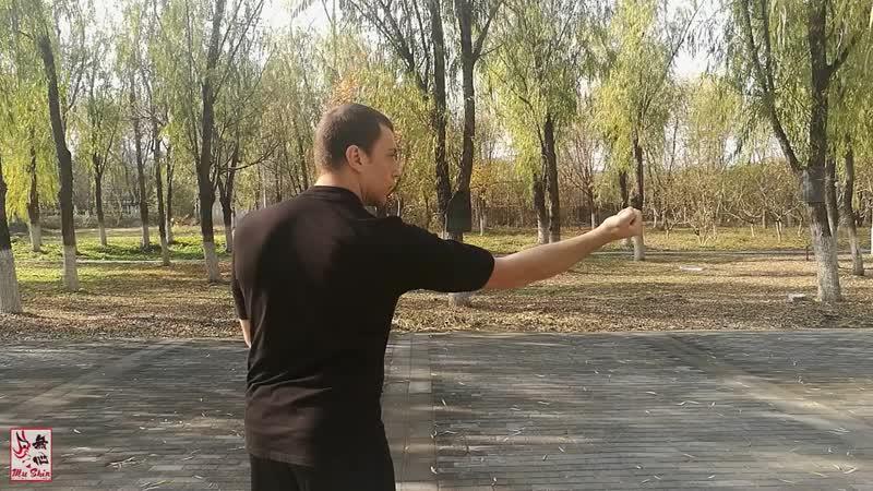 Xingyi Quan Ten Minute Primer Heng Quan Cross Cut Fist