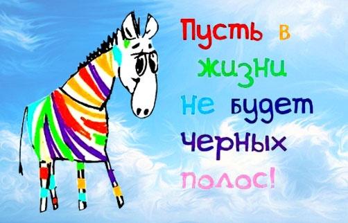 щиты, поздравления про зебру должно сочетаться