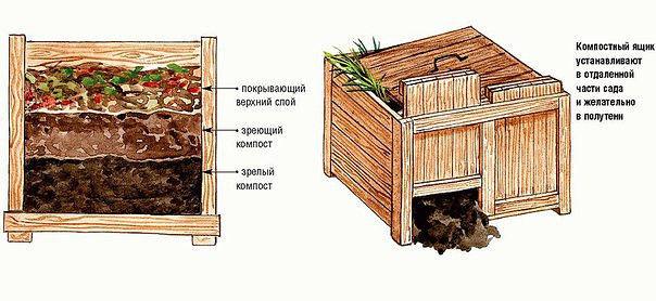 Компостная яма с умом. Каждый садовод скажет вам, что компостная яма это незаменимая помощница в приготовлении подкормки для растений. Она должна быть оборудована на каждом участке. Такое