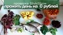 КАК ПРОЖИТЬ ВЕСЬ ДЕНЬ на 0 РУБЛЕЙ. проверка SlivkiShow