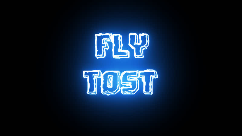 Fly Tost
