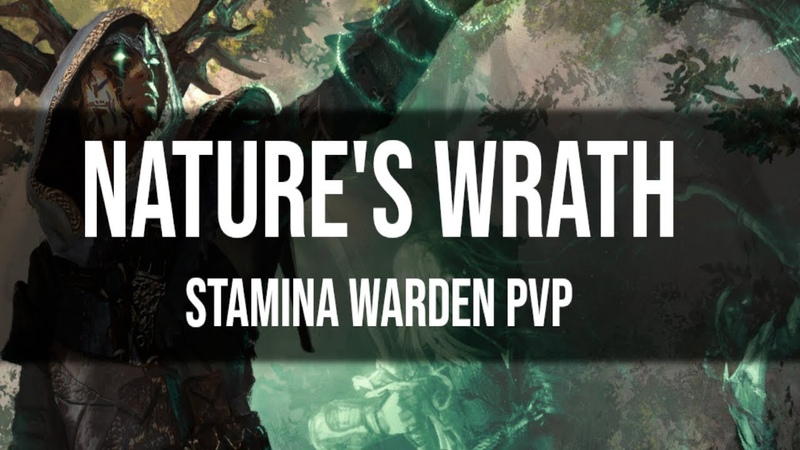 ESO Stamina Warden PvP Build Gameplay Nature's Wrath Scalebreaker