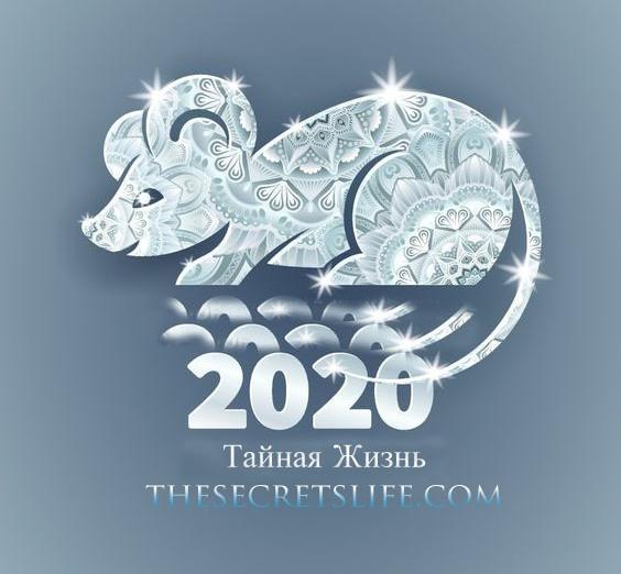 Восточный гороскоп на 2020 год: Год Белой Металлической Крысы