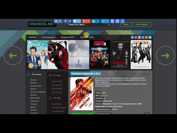 Обзор сайта Kinodog