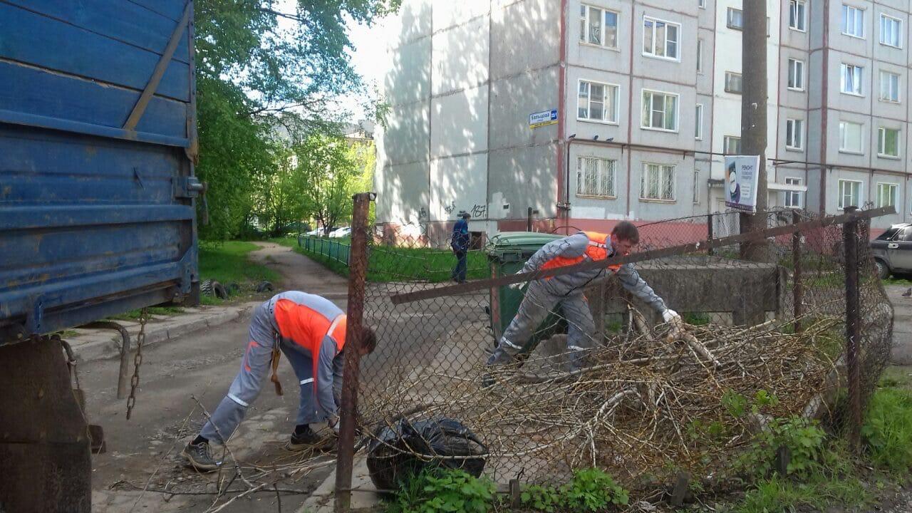 Проспект Строителей, 46. Снос аварийного дерева, вывоз