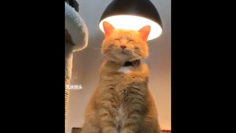 Техника Просветление 💡😅