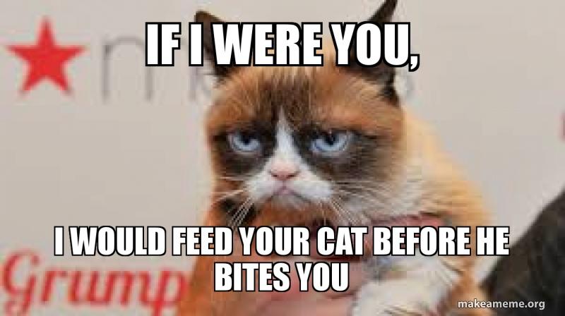 Conditional 2: Если бы я был тобой (на твоем месте), я бы покормил кота прежде, чем он тебя укусит.