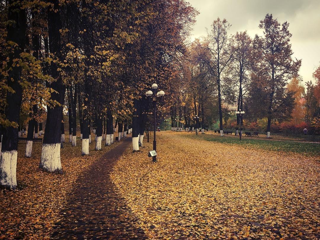 Доброе утро, Дмитров! Сегодня ожидается облачная погода, температура