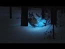 Nokian Hakkapeliitta 9 - Extreme winter grip