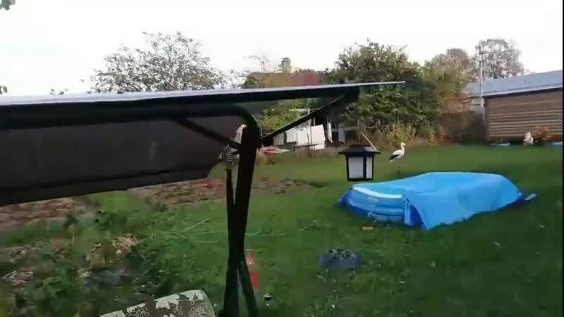 ☔ Крыша для качели Идеи для сада дача ландшафт огород
