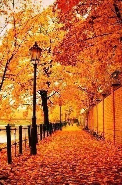 Никто ни от чего не застрахован! От счастья этой Осенью... например!