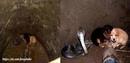 Инцидент произошел в индийском штате Пенджаб. Два щенка провалились в колодец.