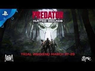 Predator: Hunting Grounds   Пробные выходные 27-29 марта   PS4