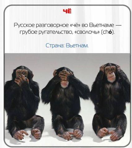 Оксана Пуханова | Новосибирск