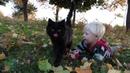 ЧЕРНЫЙ КОТ. Николя и Багира- друзья навсегда! Нападение собаки таксы.