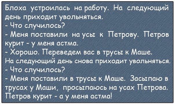 Мандавошка Анекдот
