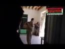 Иран 8 боевиков Пешмерги перешли границу с Ираном из Ирака,и стали терроризировать.В одной из деревень были окружены КСИР-ом.