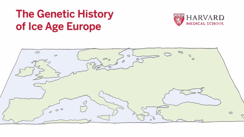 The Genetic History of Ice Age Europe