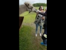 Укус верблюда