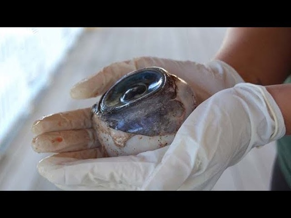 Древние артефакты после открытия которых все изменилось