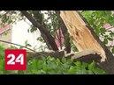 Шквалистый ветер в Москве шестеро пострадавших среди них двое детей Россия 24