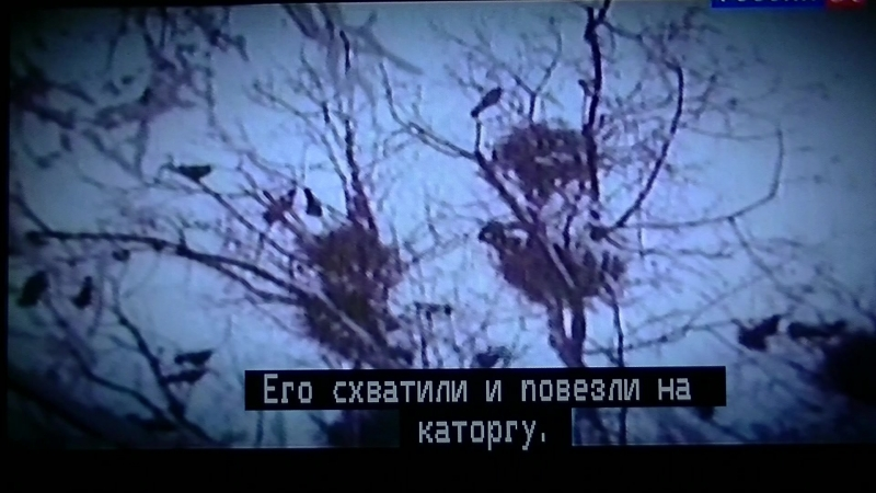 Искатели Тайна узников Кексгольмской крепости