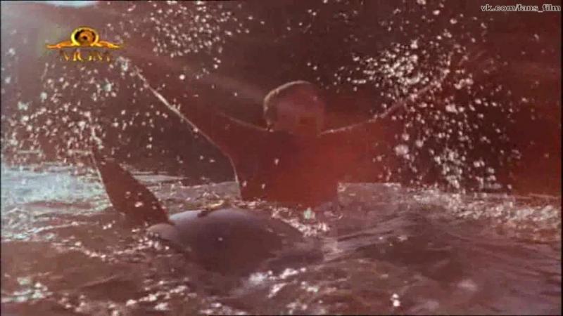 Золотой тюлень / The Golden Seal (1983)
