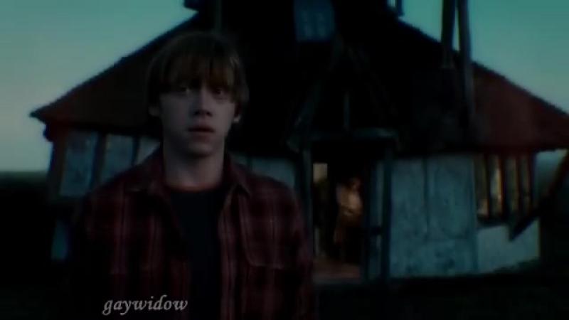 Hermione Granger vs Draco Malfoy vs Harry Potter vs Ron Weasley vine