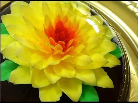 Cách làm rau câu 3d đẹp và đơn giản (phần 13)| Beautiful Gracilaria,3D gracilaria jelly
