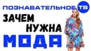 Зачем нужна мода Познавательное ТВ, Артём Войтенков