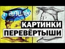 Галилео Картинки-перевертыши 🖼 Pictures-shifters