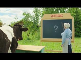 Что знает корова, чего не знаете вы?