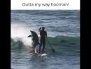 I think he did it on poirpose. ha ha....mp4