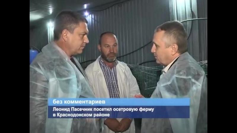ГТРК ЛНР Леонид Пасечник посетил осетровую ферму в Краснодонском районе