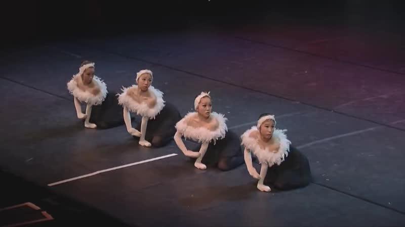 Отвлекитесь от давно знакомого танца и оцените японскую интерпретацию этого балета Очень нестандартно японские балерины подошли