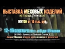 Выставка_Шубы ИП Низгуренко П.С._10сек._Брянск_12-