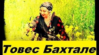 Цыгане Марджанджа Товес Бахтале 098 463 06 17