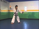 Tang soo do black belt form 7