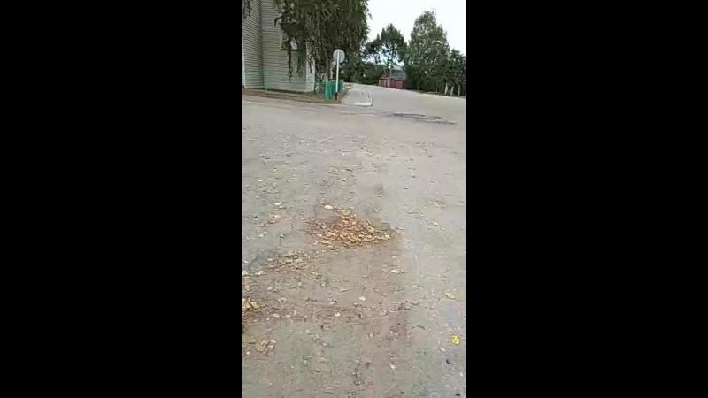 Арина Егорова Live