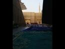 صلاة العيد اليوم من مسجد رسول الله ﷺ وأم المصلين فضيلة الشيخ صلاح البدير