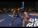 MMA - The Knockouts of 2009 - Vol