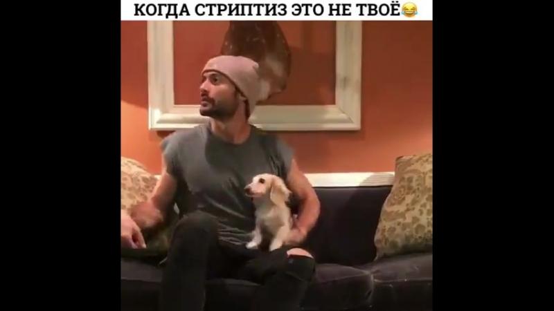 Striptiz_staralas_iz_za_vseh_sil
