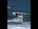 Slingshot Kite 2018 Reed Brady