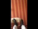 Мухаммад Байрамуков Live